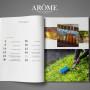 AROME № 2 зима-весна 2014 soderzhanie zhurnala aromaterapiya
